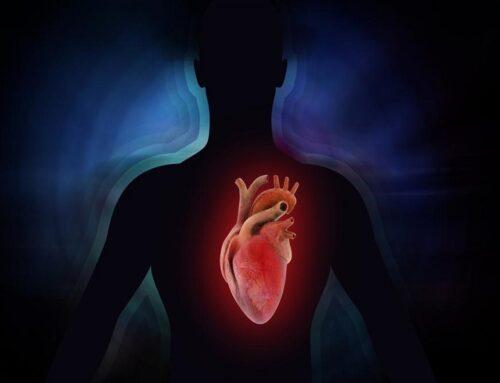 Patologie della valvola mitrale: stenosi ed insufficienza
