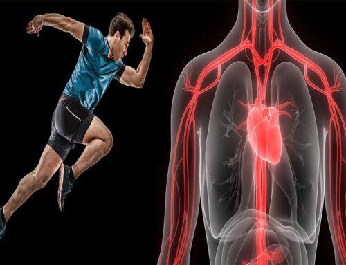 Ipertrofia cardiaca: cardiopatia o cuore d' atleta?