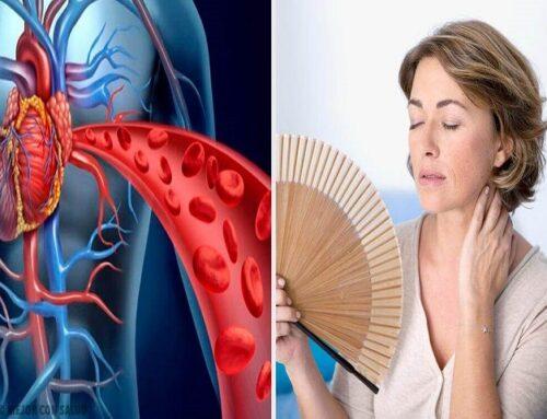 Cuore e donna: cambiamenti cardiovascolari dopo la menopausa